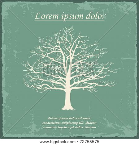 Old bare tree on vintage paper. Vector
