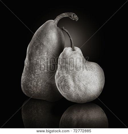 Pear Fruit Friends On Black