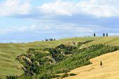image of senesi  - Crete senesi characteristic landscape in Val d - JPG
