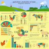 stock photo of husbandry  - Agriculture animal husbandry infographics Vector illustrationstry info graphics - JPG