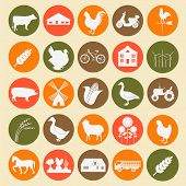 picture of husbandry  - Set agriculture animal husbandry icons - JPG