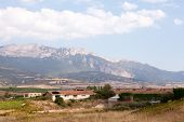 stock photo of calatrava  - Alavesa vineyards and bodegas in Alava region of La Rioja near Laguardia with the Cantabrian mountains as a back drop - JPG