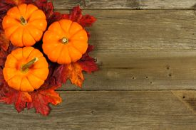 pic of cluster  - Cluster of autumn leaves and pumpkins against aged wood background - JPG