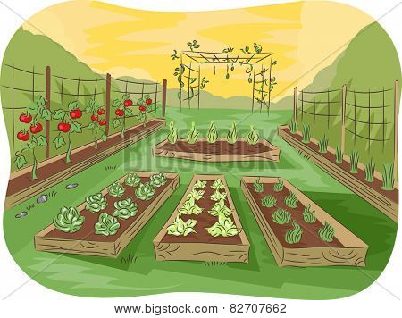Illustration of a Kitchen Garden Lined Up With Fruits and Vegetables