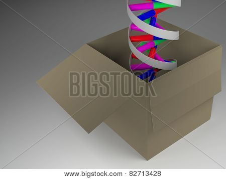 Dna In Box