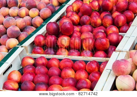 Nectarines in healthy eating concept