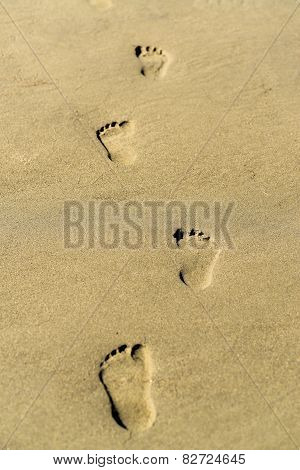 Footprint On A Sandy Beach