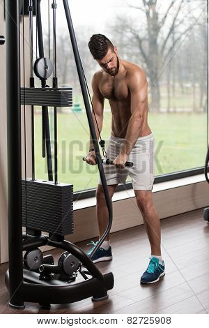 Handsome Man Doing Triceps Exercises In The Gym