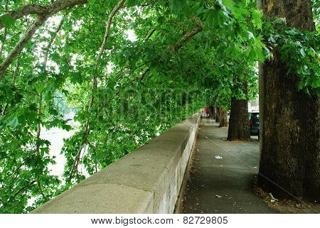 Board View Of Tiber River In Rome City