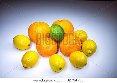 Citrus Compositon With Oranges, Tangerines, Lemons And Lime Painted With Light