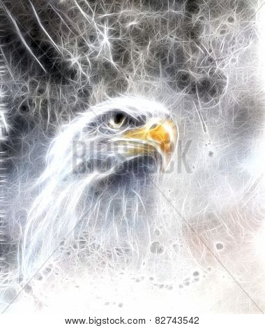 Eagle eye  On An Abstract Background Fractal Efect America symbol