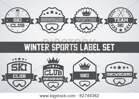 Set of Vintage Ice Snowboarding or SKI Club Badge and Label