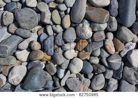 Pebbles Of Different Colours