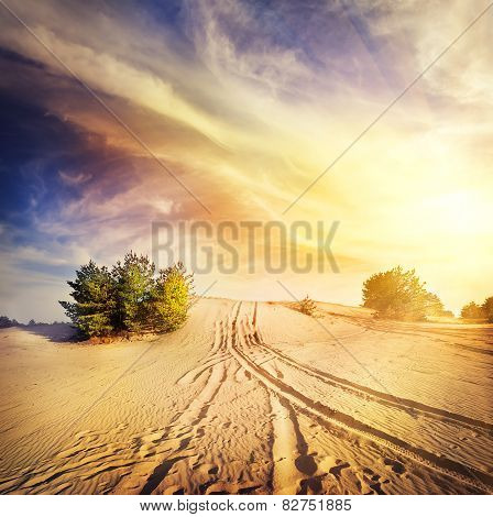 Road in the hot desert sand