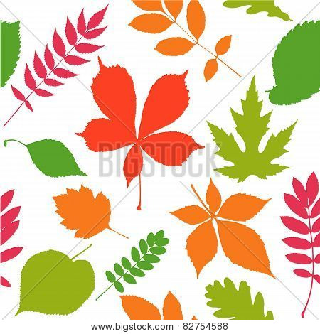 Seamless pattern background. Autumn leaves.