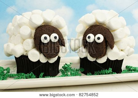 Spring lamb cupcakes with blue sky