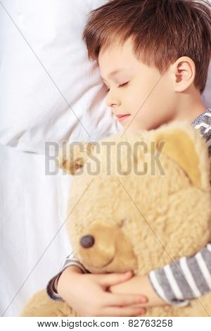 Portrait of a boy sleeping with teddy bear