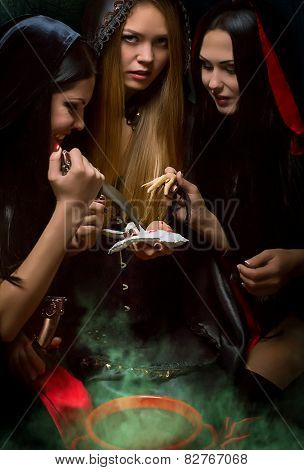 Halloween concept: young and sexy witches