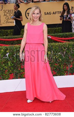 LOS ANGELES - JAN 25:  Amy Ryan arrives to the 21st Annual Screen Actors Guild Awards  on January 25, 2015 in Los Angeles, CA