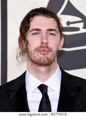 LOS ANGELES - FEB 08:  Andrew Hozier-Byrne arrives to the Grammy Awards 2015  on February 8, 2015 in Los Angeles, CA