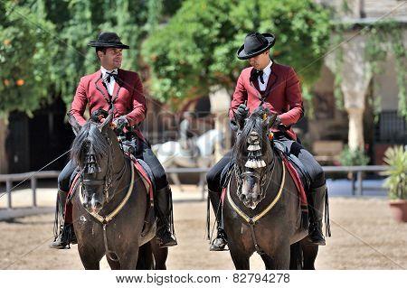Equestrian Show, Cordoba, Spain