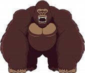 picture of gorilla  - Vector illustration - JPG