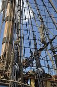 picture of tall ship  - The ropes and rigging of a tall ship against blue sky - JPG