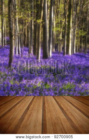 Stunning Bluebell Flowers In Spring Forest Landscape With Wooden Planks Floor
