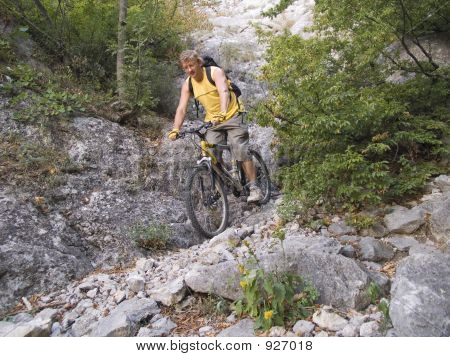 Descent To A Mountain Bicycle.