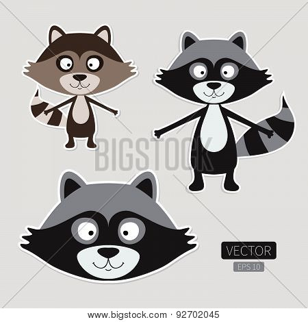 Cute raccoon stickers isolated. Vector animal