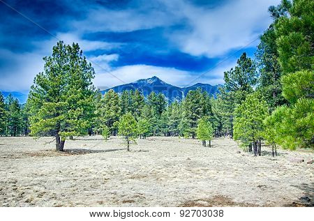 Scenic Desert Landscape With Humphreys Peak Seen In The Distance
