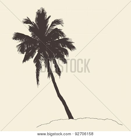 Palm Tree Bounty Vintage Engraving Vector Sketch