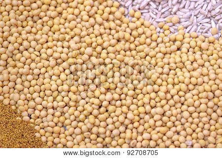 Ripe Soy Beans As Background