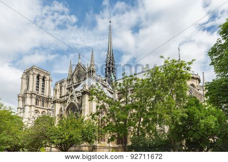 Notre Dame Cathedral In Springtime, Paris France