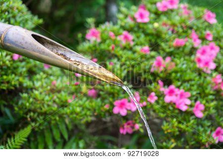 Kakehi (Japanese Bamboo Drip)