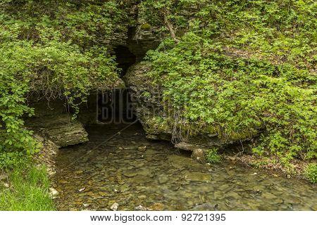 Cave Creek Spring