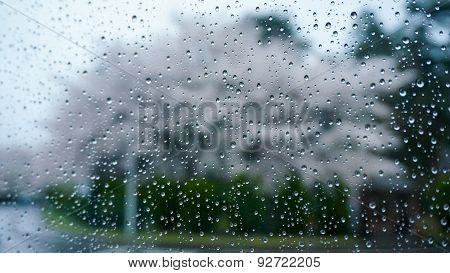 Cleared glass window on rainy day
