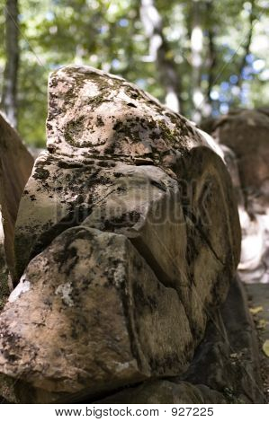 Stones In A Wood