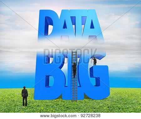 Big Data 3D Blue Word Wood Ladder With Business People