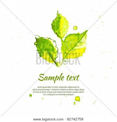 Vector Green Summer Leaves Illustration