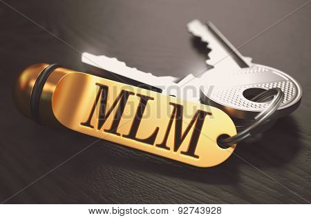 MLM Concept. Keys with Golden Keyring.