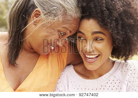 Portrait Of Mother With Adult Daughter In Park
