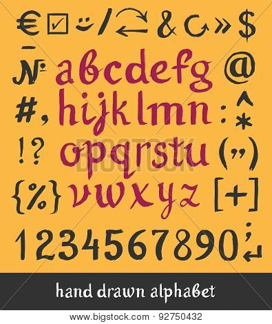 Hand drawn alphabet and letters numbers brush