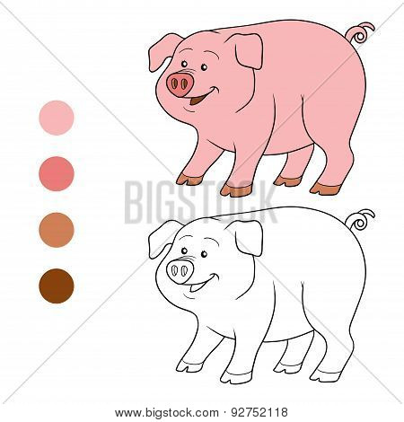 Coloring Book (pig)