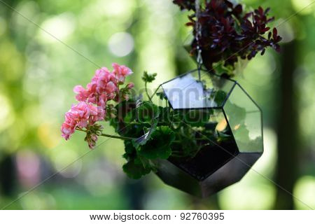 ST. PETERSBURG, RUSSIA - JUNE 4, 2015: Flowers in the art vase during the festival Emperor's Gardens of Russia. The exposition Silk Road Gardens is in focus of festival this year