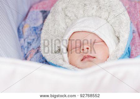 Newborn Baby Sleeping In A Stroller