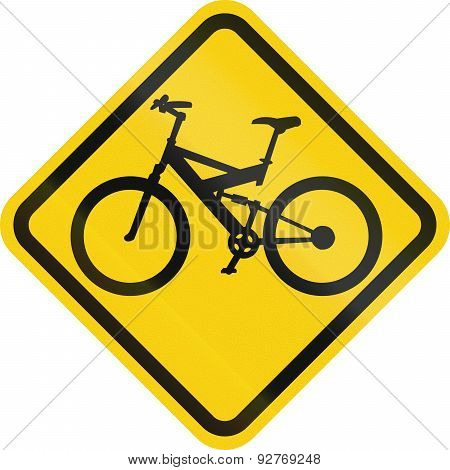 Bicycle Crossing In Colombia