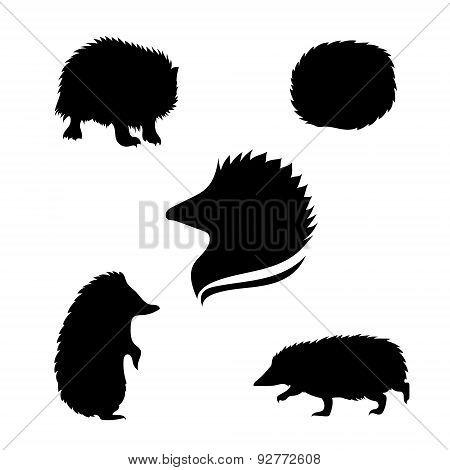 Hedgehog Set Vector