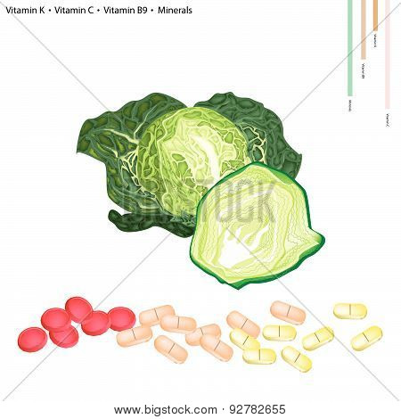 Savoy Cabbage With Vitamin K, C And B9