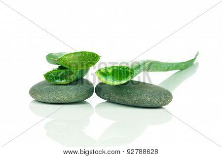 Aloe with spa stones